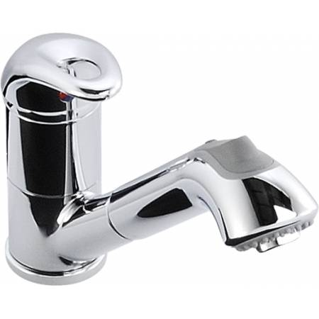 Draco Single Lever with Spray in Chrome